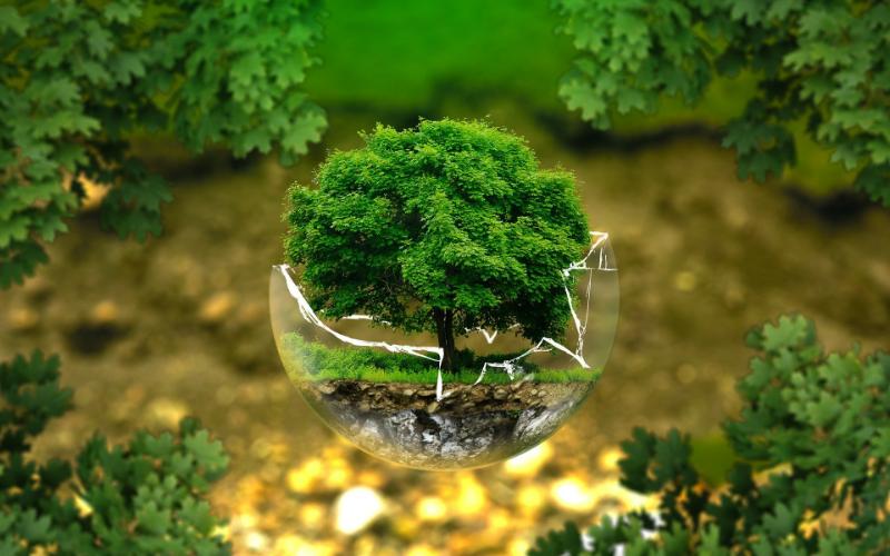 Zelená dohoda pro Evropu
